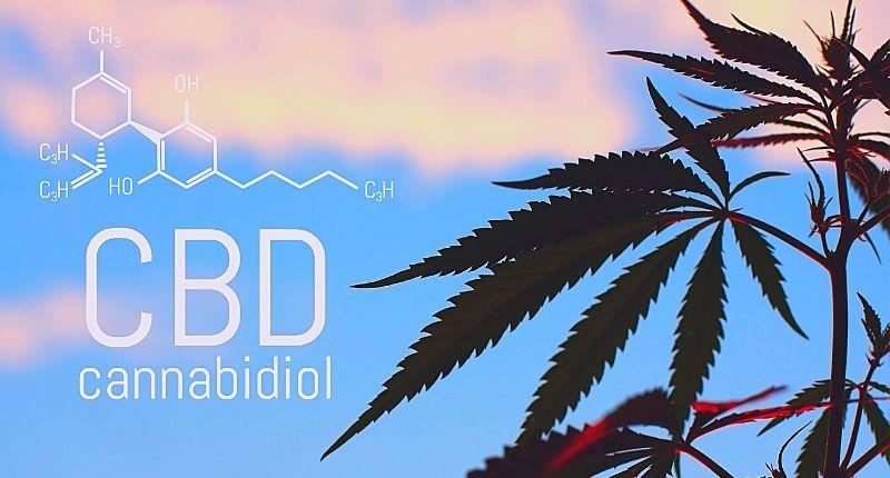 cannabidiol_food_supplement